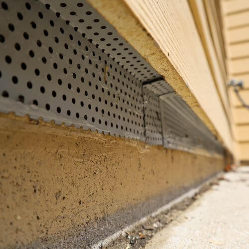 Sealing Lower-Level of House from Rodents
